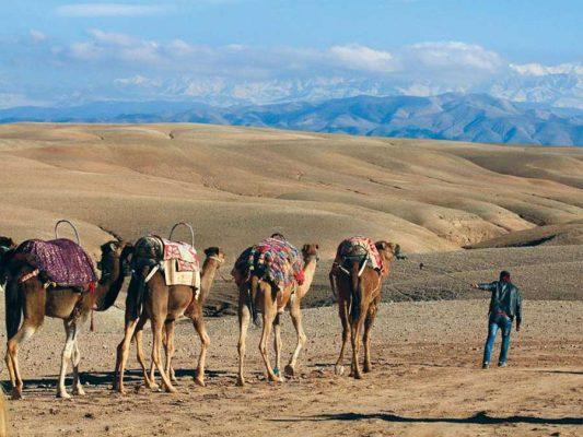 How do I get to agafay desert?